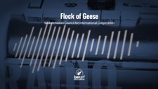 SCIC Flock of Geese Radio 60s